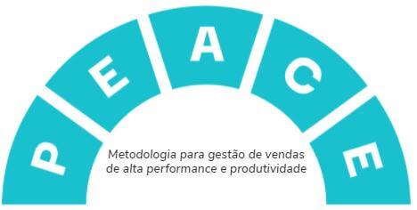 metodologia peace